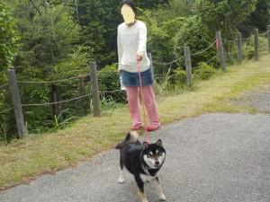 琵琶湖で会ったわんこ